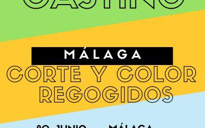 CERRADO — CASTING MÁLAGA – Peluquería Mujeres Corte, Color y Recogidos